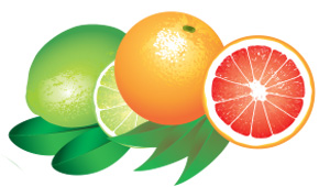 Lime and Grapefruit are some of our favorite scents