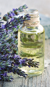 Lavender essential oil is an amazing scent
